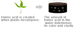 Humic acid is created when plants decompose.The amount of humic acid in the water determines its color and clarity.