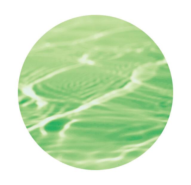 バスクリン 森の香り「ミニオン」コラボデザイン