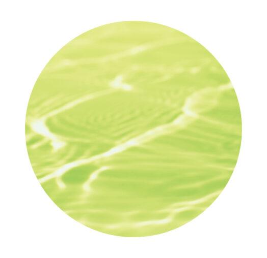 バスクリン ゆずの香り「ミニオン」コラボデザイン